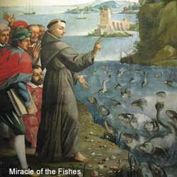 Miracle of the Fishes